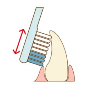 前歯の裏側の磨き方